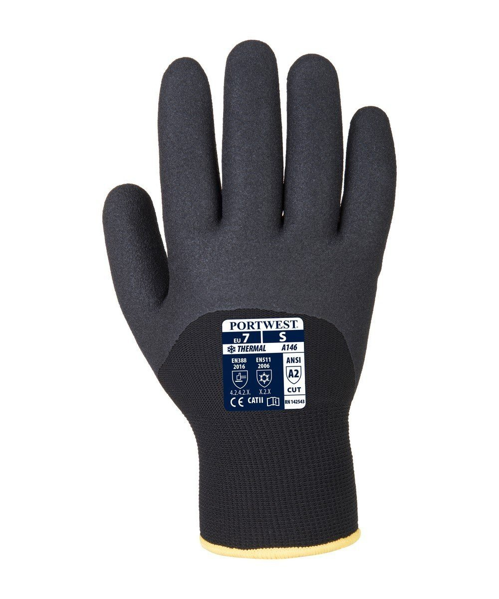 PPG Workwear Portwest Arctic Winter Glove A146 Black Colour Back View